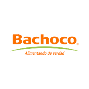 BACHOCO.png
